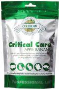 Critical Care - Äpple & Banan 454g
